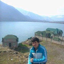 Саша, 24 года, Павловский Посад