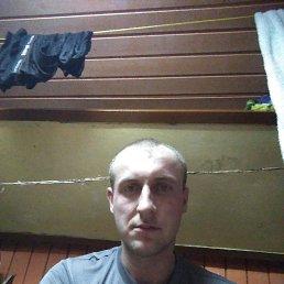 Мишаня, 24 года, Кувшиново