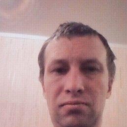 Кирилл, 37 лет, Тула