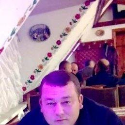 Олег, 33 года, Бершадь