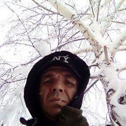 Андрей, 41 год, Краснодон