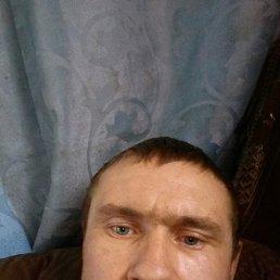 Борис, 36 лет, Комсомольское