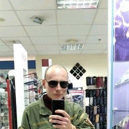 Viktor, 28 лет, Кременчуг