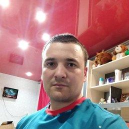 Александр, 28 лет, Яр