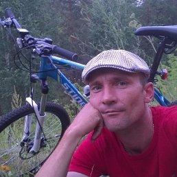 Андрей, 39 лет, Тольятти