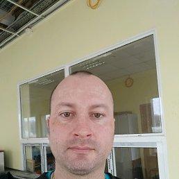 Алексей, 35 лет, Дубна