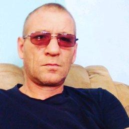 Владимир, 43 года, Солонешное