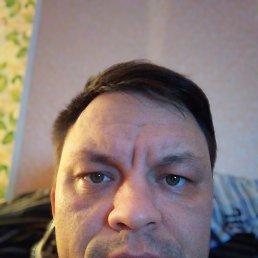 Антон, 37 лет, Калининград