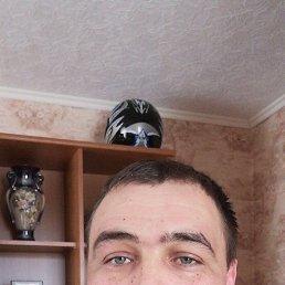 Александр, 39 лет, Коломна-1