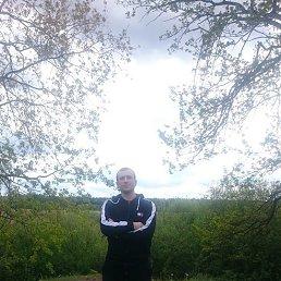 денис, 36 лет, Белгород-Днестровский