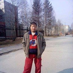 Сергей, 44 года, Тында