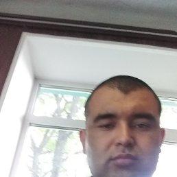 Хайдар, 37 лет, Аша