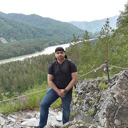 Евгений, 28 лет, Кемерово