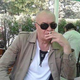 Владимир, 52 года, Сочи