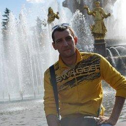 Ром, 33 года, Балашов