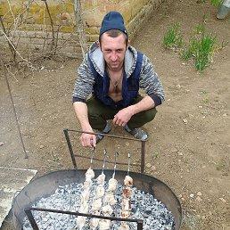 Серёга, 27 лет, Зимовники