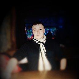 Андрей, 28 лет, Житомир