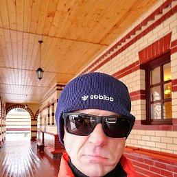 Виктор, 44 года, Тверь