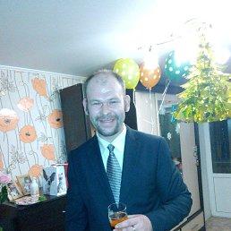 Фото Алексей, Владимир, 36 лет - добавлено 8 февраля 2020