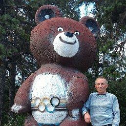 Анатолий, 66 лет, Боярка