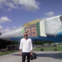 Александр, 33 года, Кременчуг
