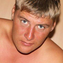 Александр, 28 лет, Благовещенск