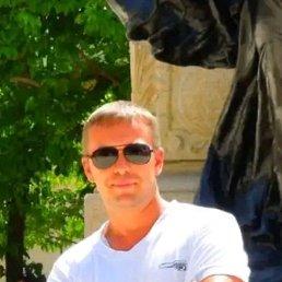 Евгений, 40 лет, Дорогобуж