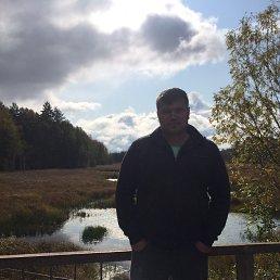 Алексей, 28 лет, Гатчина