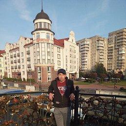 Артур, 38 лет, Калининград