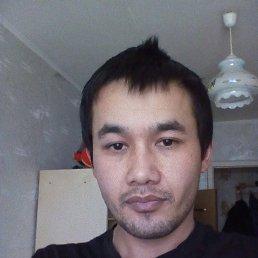 Камиль, 28 лет, Загорянский