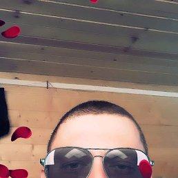 Дима, 41 год, Шишкин Лес