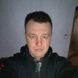 Антон, 45 лет, Ярославль