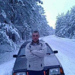 Гена, 36 лет, Новозыбков