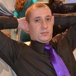 Данил, 35 лет, Барнаул