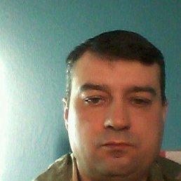 Сергей, 44 года, Верхний Мамон