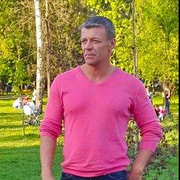 Александр, 52 года, Мытищи