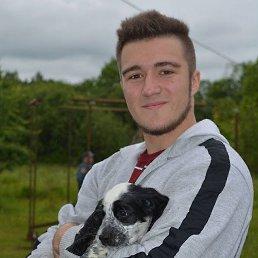 Алексей, 23 года, Новомосковск