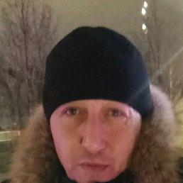 Сергей, 49 лет, Люберцы