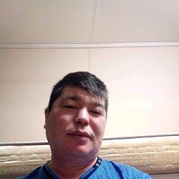 Амангали, 41 год, Красный Кут