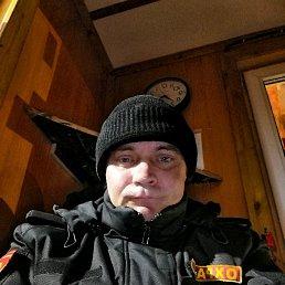 Дмитрий, 42 года, Дедовичи