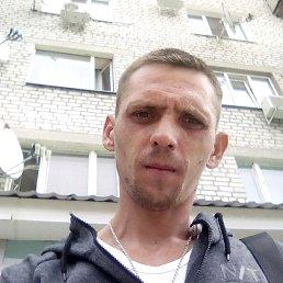 Николай, 29 лет, Михайловка
