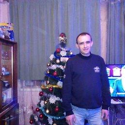 Рома, 31 год, Синельниково