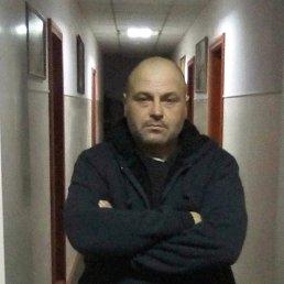Сергей, 42 года, Середина-Буда