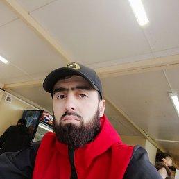 Али, 28 лет, Люберцы