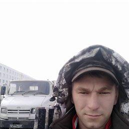 Андрей, 29 лет, Валуйки