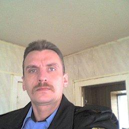 Максим, 44 года, Курск