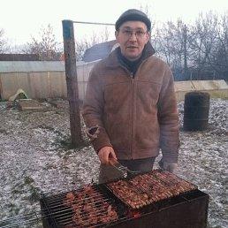 Алексей, 42 года, Бронницы