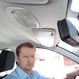 Виктор, 37 лет, Ярославль