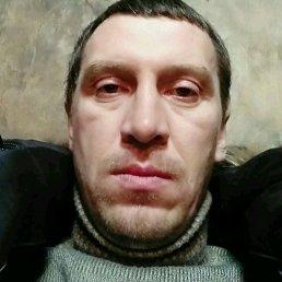 Александр, 37 лет, Киренск