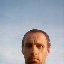 Фото Василь, Жидачов, 41 год - добавлено 8 марта 2020